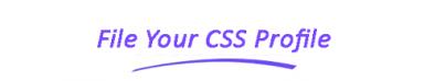 css profile - file